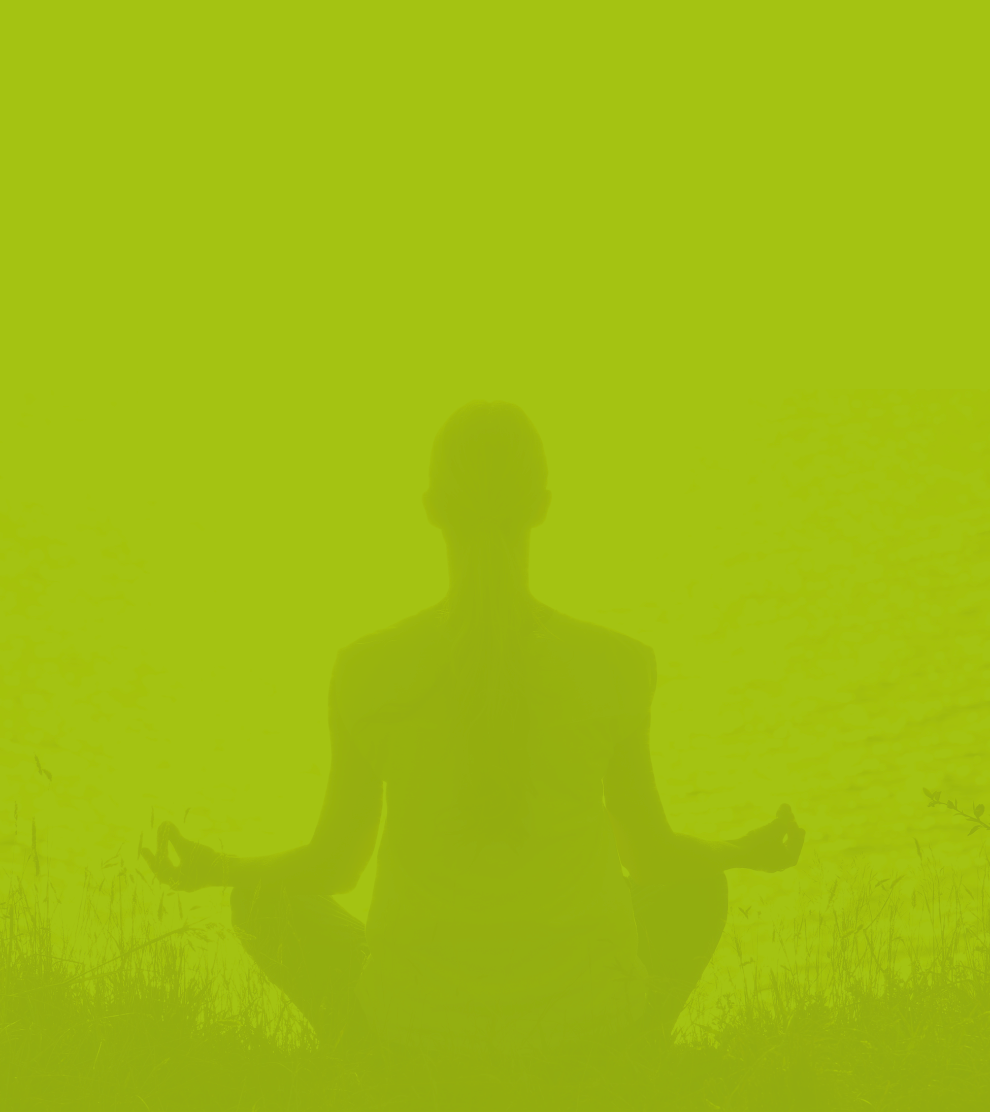 Banner Verde 2