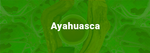 ayahuasca-terapia-integrativa